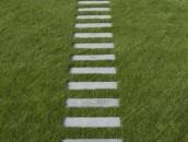 Jak prowadzić ścieżki wokół domu? zdj. 15