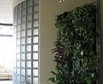Zielona ściana w biurze firmy Euro Project w Zielonej Górze