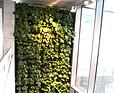 Oxygen Park - zielone płuca warszawskiego biurowca