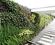 Zewnętrzna zielona ściana z zielonym dachem